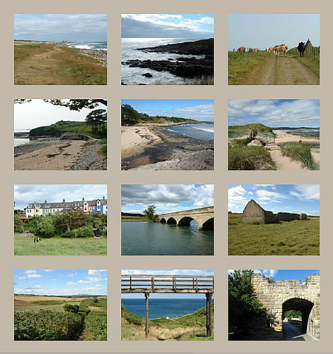 St. Oswald's Way long distance walk, Craster to Warkworth